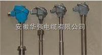 WZP2-630N耐磨热电偶
