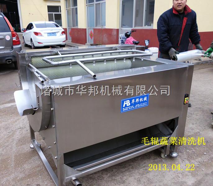 毛辊清洗机 土豆清洗机(山东华邦专业生产)
