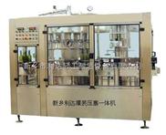 葡萄酒灌装设备,灌装压塞二联机,装瓶机