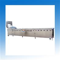 WA-3000大型洗菜机