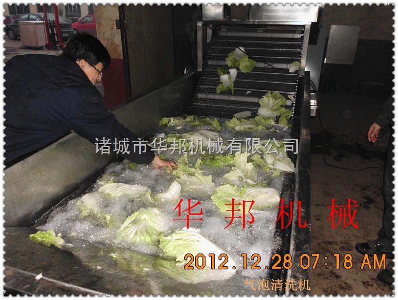 蔬菜清洗机  气泡式清洗机