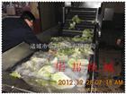 HB-3000蔬菜清洗机  气泡式清洗机