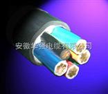 耐火电缆 NH-YJV 4*35+1*16