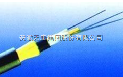 GYXTY-4B1天康光纤电缆