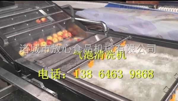 供应放心FX-600黄桃清洗机|黄桃清洗机|洗黄桃设备