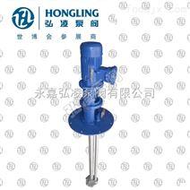 FY型耐腐蚀不锈钢液下泵,耐腐蚀液下泵,不锈钢泵