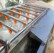 番茄酱生产线 西红柿气泡清洗机