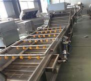 HLXQ-3000優質不銹鋼式芒果清洗機