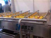 3000-果蔬氣泡清洗機 廠家直銷多功能氣泡、毛輥清洗機 西蘭花清洗機