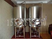 啤酒设备 小型精酿啤酒设备 家用自酿啤酒机