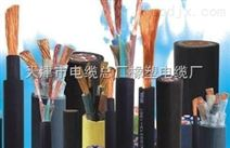 STP-120-RS485 2*2*1.5通讯电缆价格