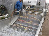豆角气泡清洗机 泡椒清洗机厂家