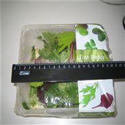 托盒有机蔬菜自动包装机 佛山有机蔬菜多功能包装机