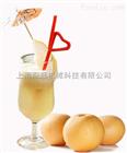 梨汁生产线