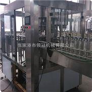 DGCF24-24-8-含气饮料生产线