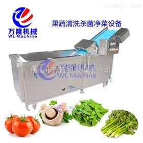 QB-25不锈钢瓜蔬清洗机产量高