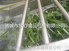 蔬菜气泡清洗机|韭菜气泡清洗机诸城放心机械