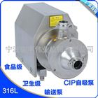 CIP回程泵