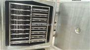 FZG-24真空干燥箱