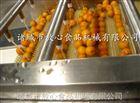 杏子清洗机_水果气泡清洗机