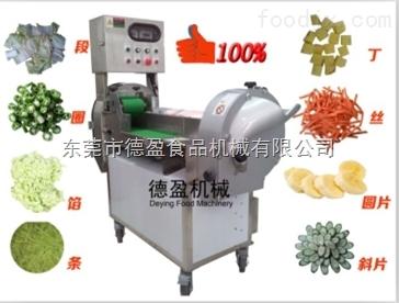DY-301-东莞德盈学校用双变频调速多功能切菜机