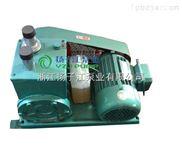 2X型双级旋片式系列真空泵气体传输泵厂家直销现货供应
