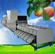 供应利农牌自动选果机(清洗打蜡风干分级一步到位)