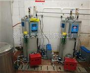 300-馒头房必备生物质蒸汽发生器