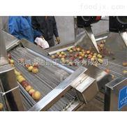 全自动不锈钢冲浪式洗果机 水果清洗风干机