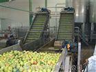 苹果汁加工生产线