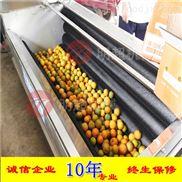 柠檬洗果机现货供应