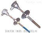WRNN2-330耐磨热电偶