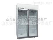 雙門冷藏柜