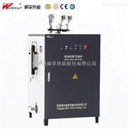 LD系列自动R智能式工业电锅炉