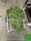 FX-800韭菜气泡清洗机 多种蔬菜清洗机