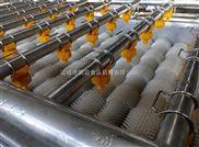 毛刷清洗机-广西百香果全自动清洗设备*厂家