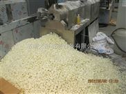 SLG65-III-预糊化淀粉加工设备,变形淀粉加工设备