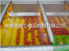 FX-800圣女果毛辊清洗机