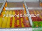 FX-800西红柿蔬菜清洗机