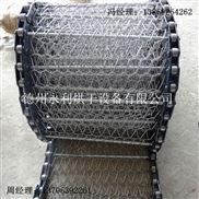 直銷小型清洗機網鏈 小型輸送機鏈網