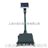 XK3100-B2南宁机电改装秤,机械磅秤报价,说明